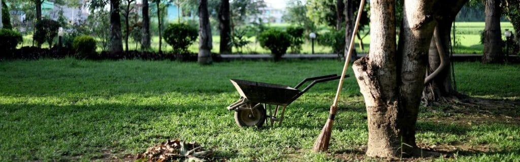 brouette dans un jardin